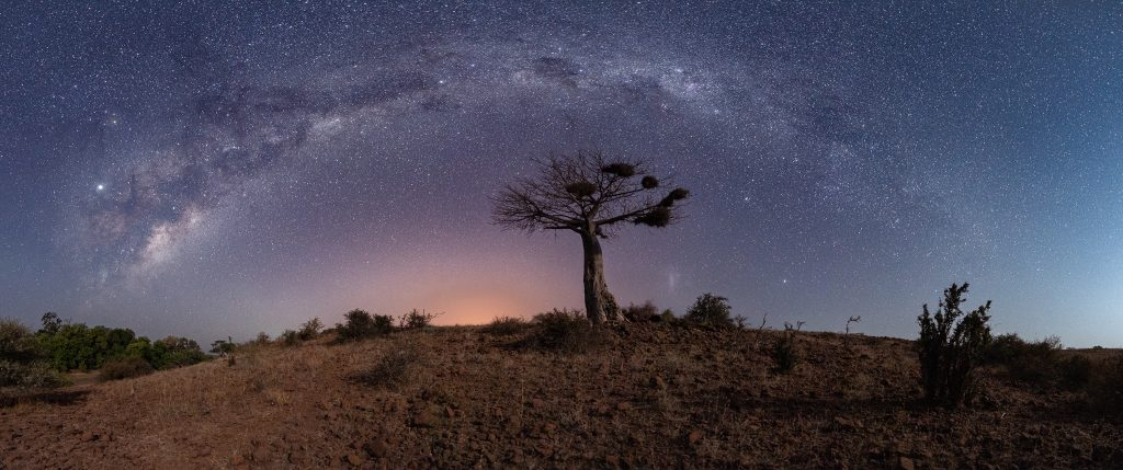 Boabab and Milkyway