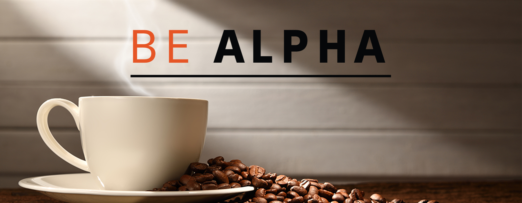 Alpha Meetup Open discussion & idea and recommendation gathering for demand fulfillment